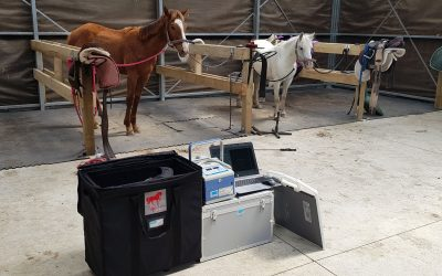 Portable equine x-ray systems